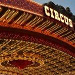 Sirkusskole